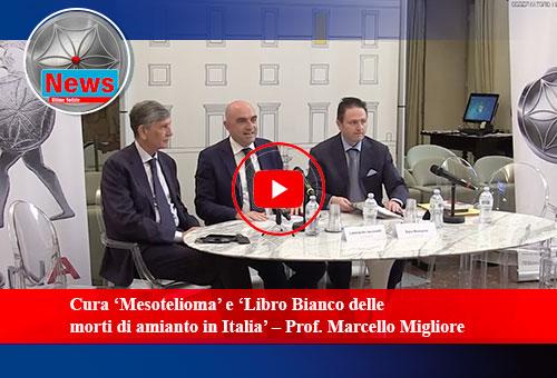 """Cura """"Mesotelioma"""" -  libro bianco delle morti di amianto in Italia"""