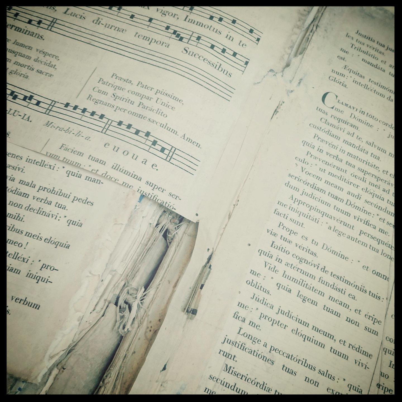 Etat de l'intérieur de l'ouvrage
