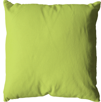 Coussin 40x40 -Anis-