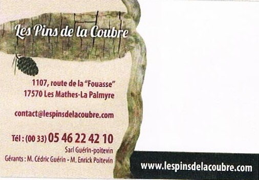 www.lespinsdelacoubre.com