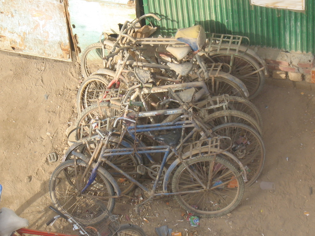 Fahrradverleih in Ägypten...