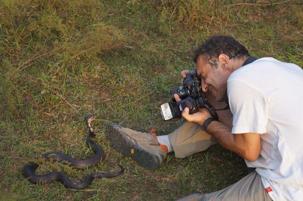 Ici, avec un Cobra chinois. Chine ©Chen Xinghe/Michel Aymerich