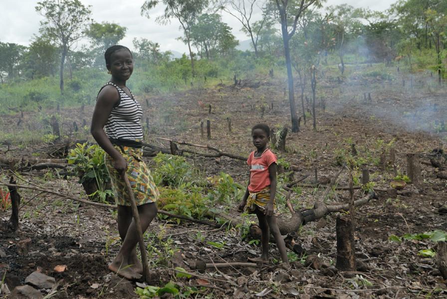 La pratique de l'agriculture sur brûlis est courante. © Michel Aymerich
