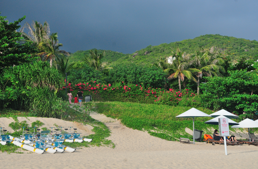 Une végétation luxuriante borde la plage de Yalong Bay 茂密的植被毗邻亚龙湾海滩