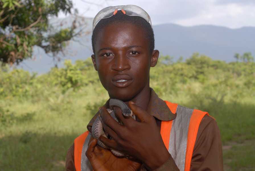 Des travailleurs guinéens s'exercent à une manipulation en douceur... © Michel Aymerich
