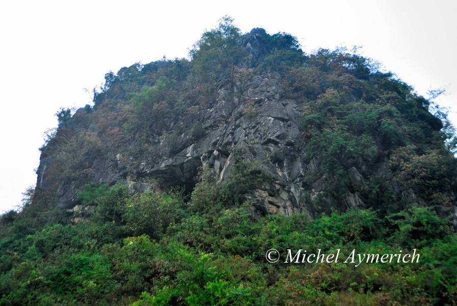 Ce mont végétalisé est un habitat propice aux cobras...
