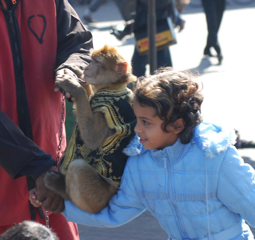 Magot à Marrakech. L'enfant ne sait pas ce qu'il entetient. Il le saura plus tard...  © Michel Aymerich