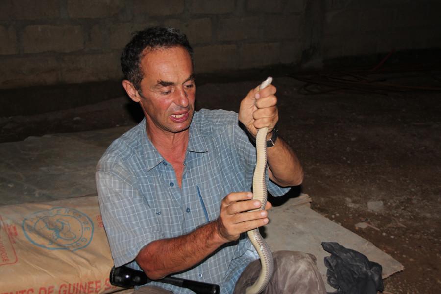 J'inspecte le serpent, le découvre... Photo Wangwei