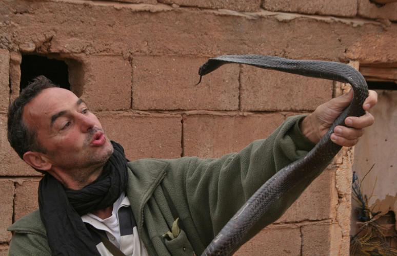 Avec un Cobra d'Afrique du Nord, Maroc © Gérard Vigo/Michel Aymerich