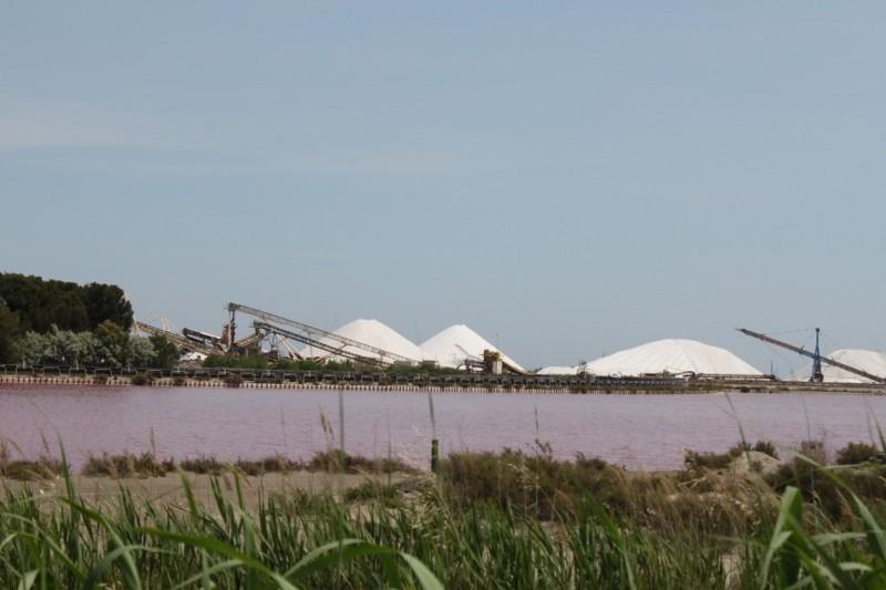 Salinen bei Aigues-Mortes
