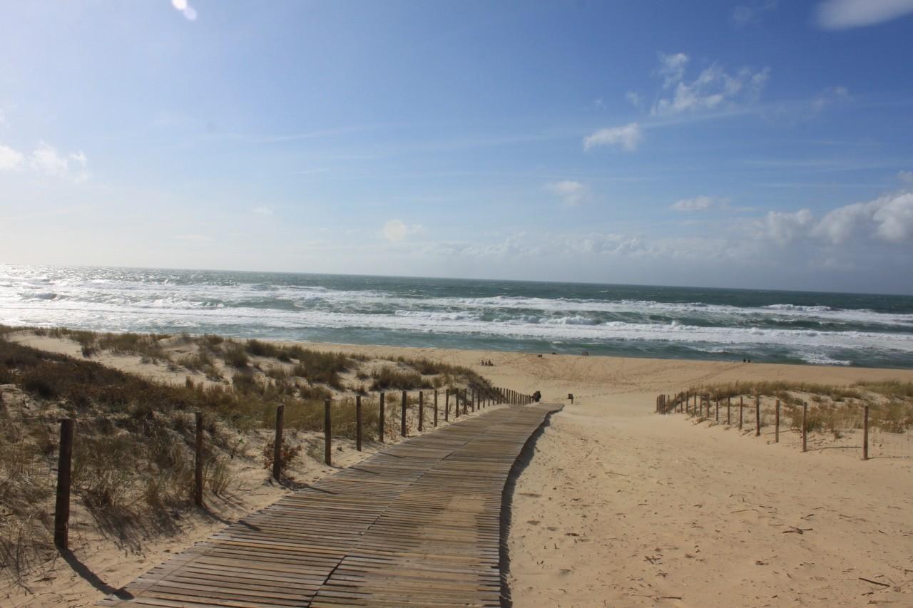 Strand Lège -  Cap Ferret