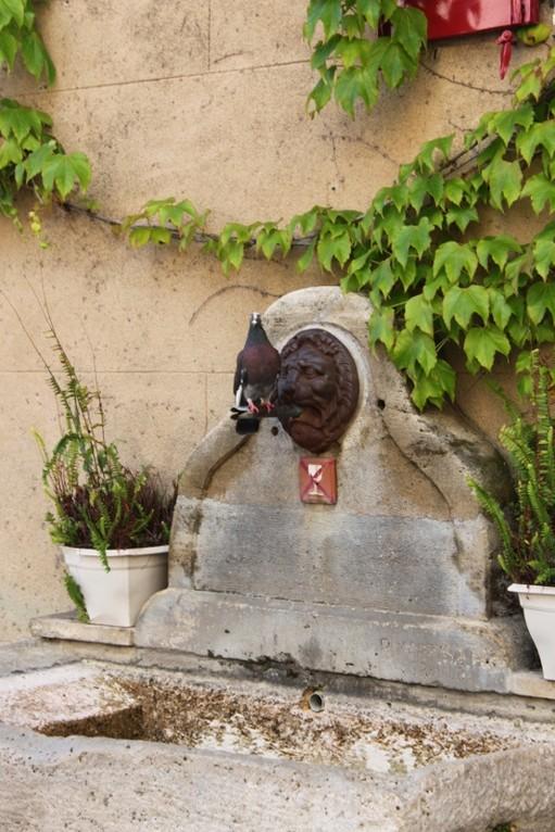 Brunnen in Grimaud