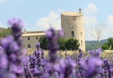 Gästehaus Lavendelreise
