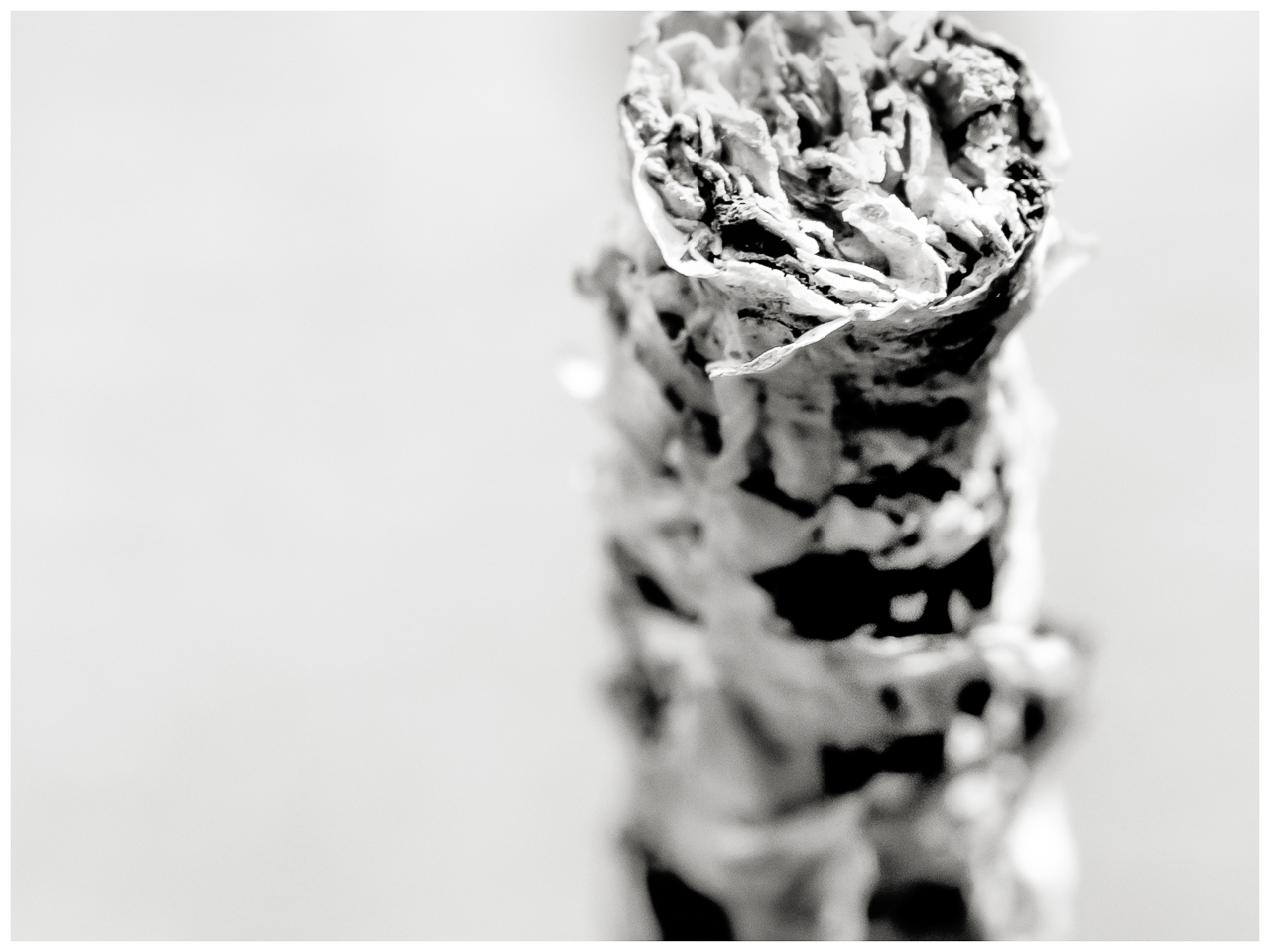 Archivum Secretum V: Wer raucht, sieht kaltblütig aus, Berlin 2018