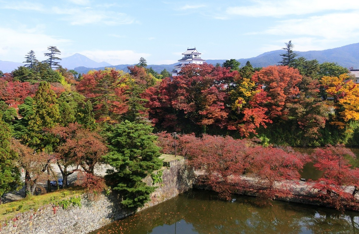 秋の紅葉がきれいです。