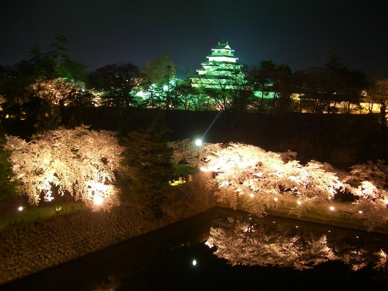ライトアップされた鶴ヶ城、手前の桜もきれいです。