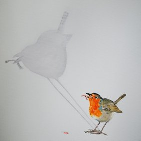 1. Robin...big shadow 50x50cm