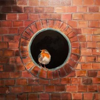 40. Robin...brickwall  50x50cm