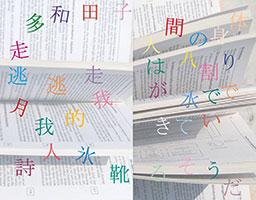 Japanische Schriftzeichen vor Buchseiten mit lateinischer Schrift