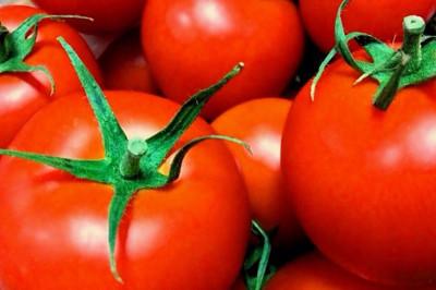 イタリアンに合うトマト
