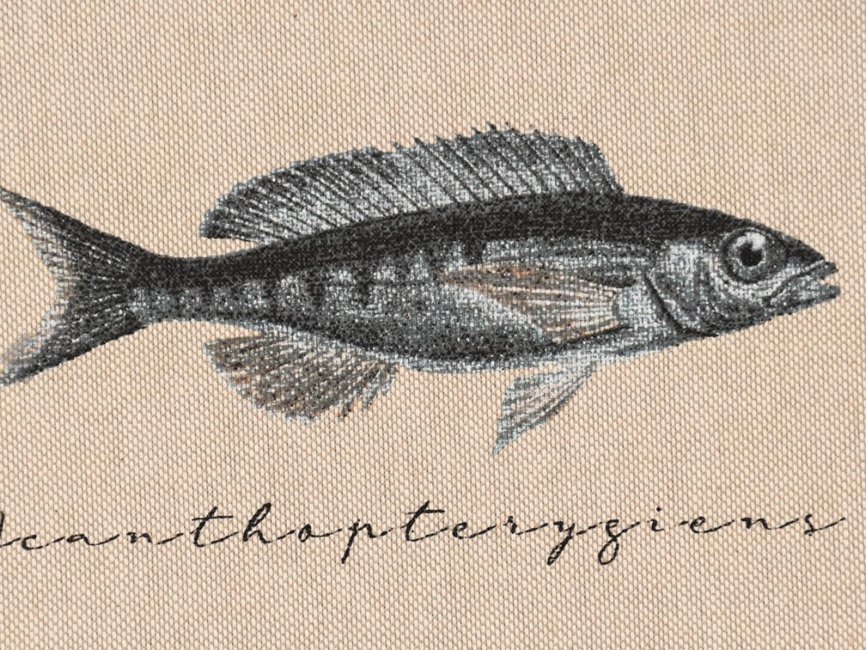 """""""Fischfang"""" Detail"""