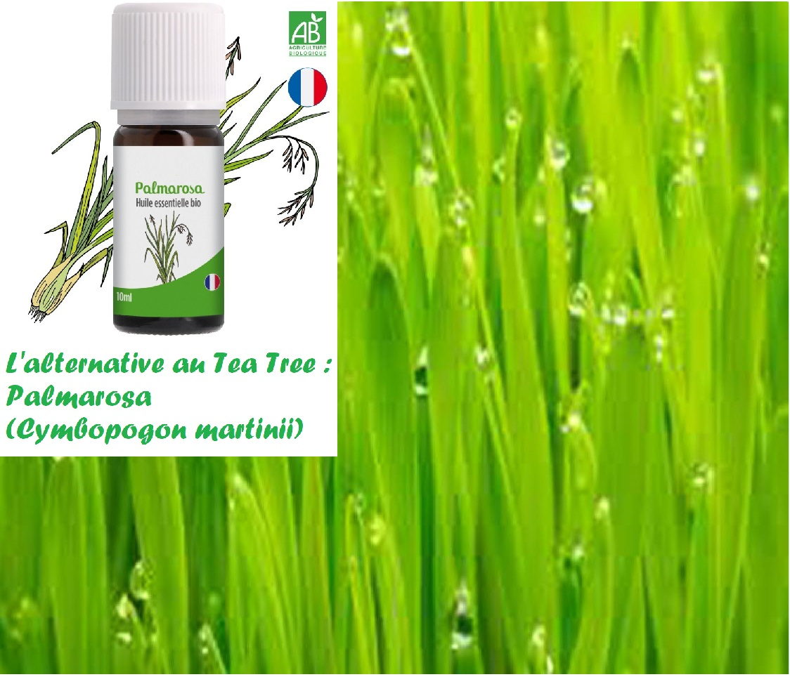 Gel hydroalcoolique : Alternative au Tea Tree