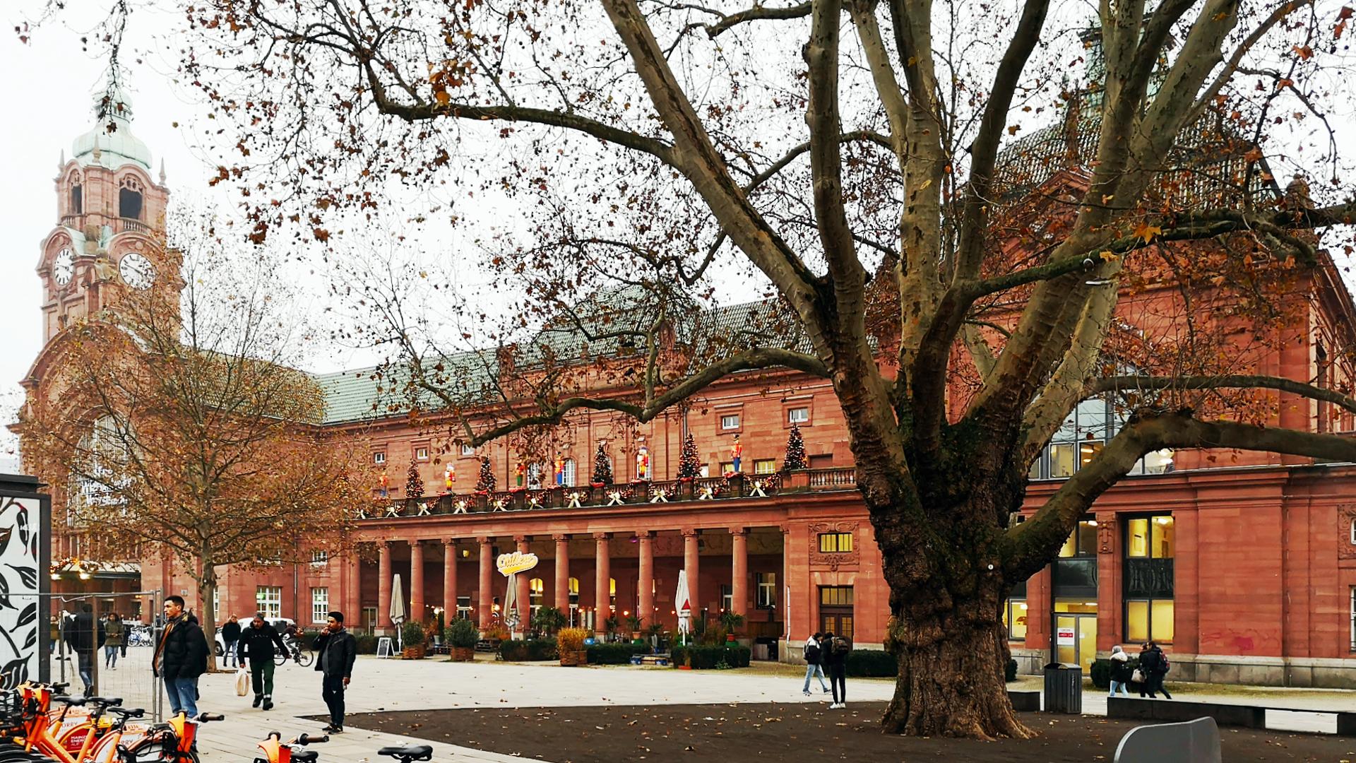 Ihr Hauptbahnhof Wiesbaden im festlichen Gewand 11/2019