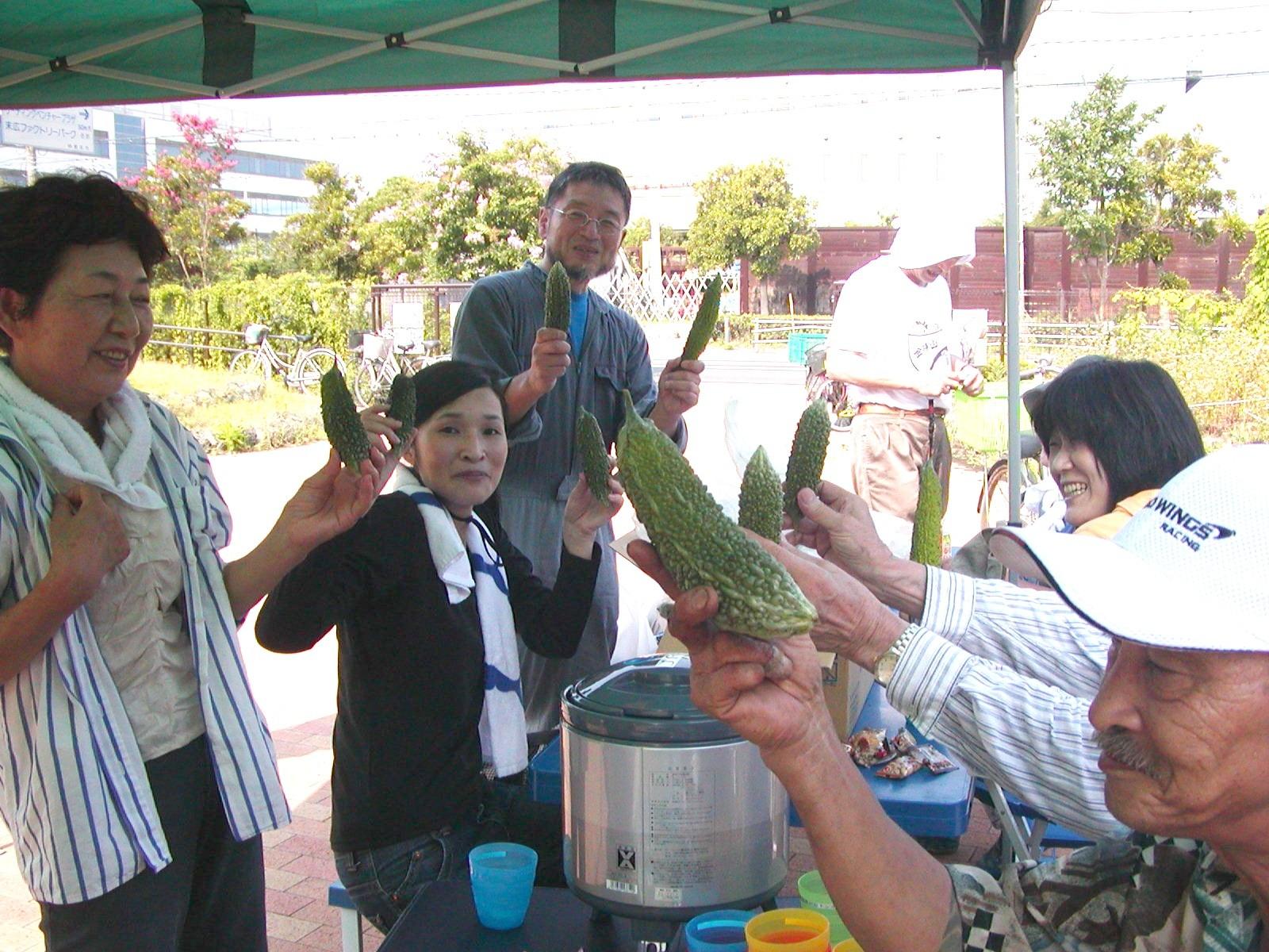 ゴーヤ収穫バンザ~イ(2010年7月24日)