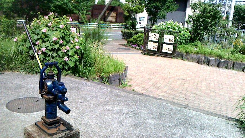 井戸から正門方向を写しました。