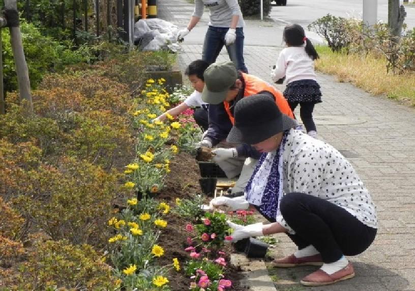 末広地区緑のまちづくり協議会からいただいた花苗植え(2013年2月23日)
