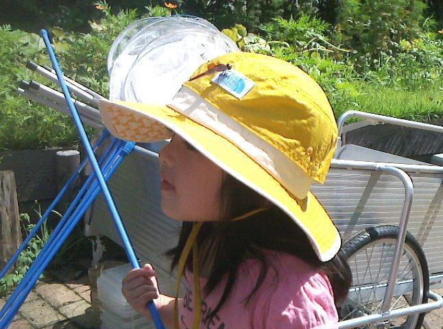 帽子にステキなトンボアクセサリー