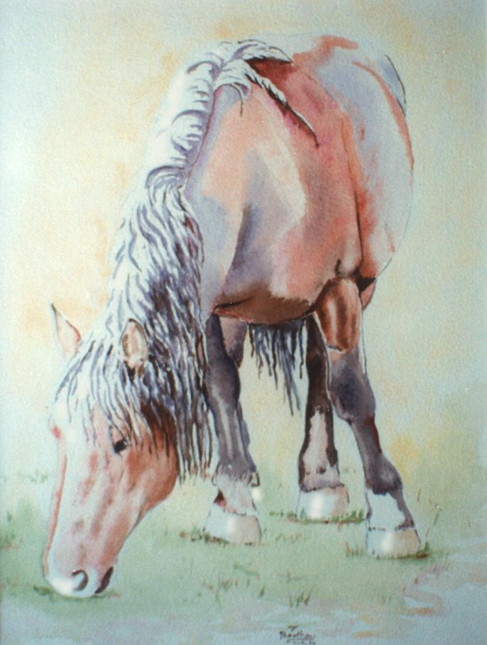 Cheval: pastel sur papier dessin, 100 cm x 60 cm
