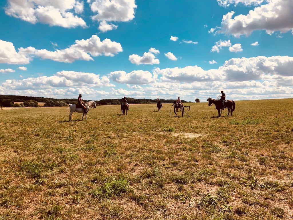 Ranch Roping mit dem Cattle Drive Team