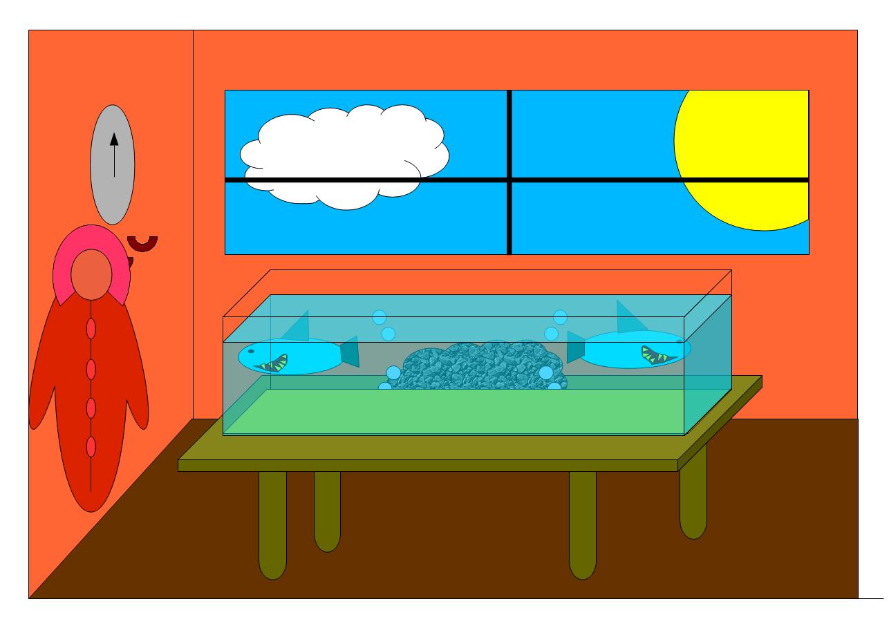Das Aquarium von Maximilian