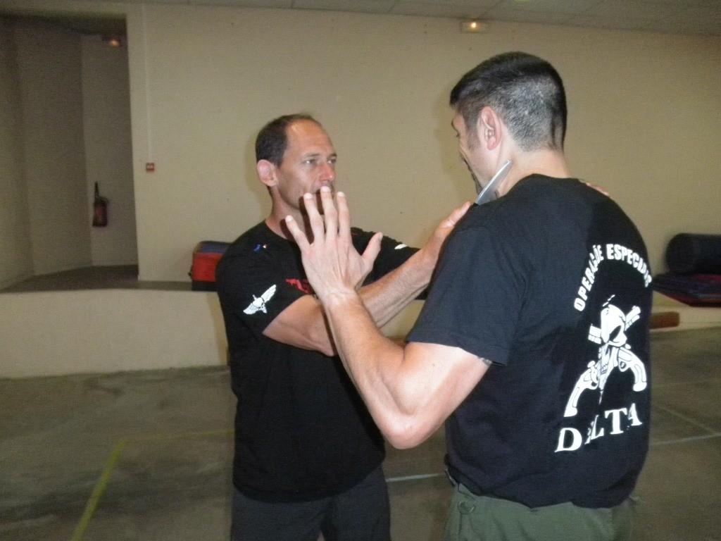 stage instructeur + préparation au DIF krav-Maga juin 2015 Castres