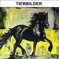 Tierbilder - Pferdebilder