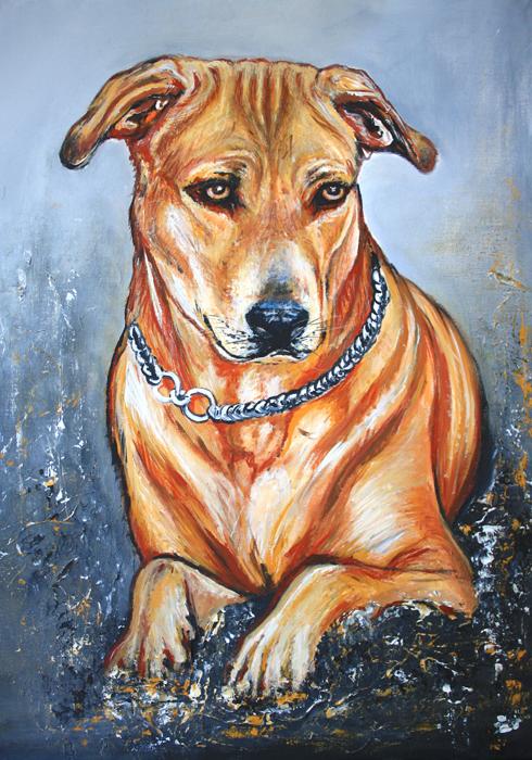 T 15 - Tierbilder Malerei Tiere - Hundeportrait gemalt