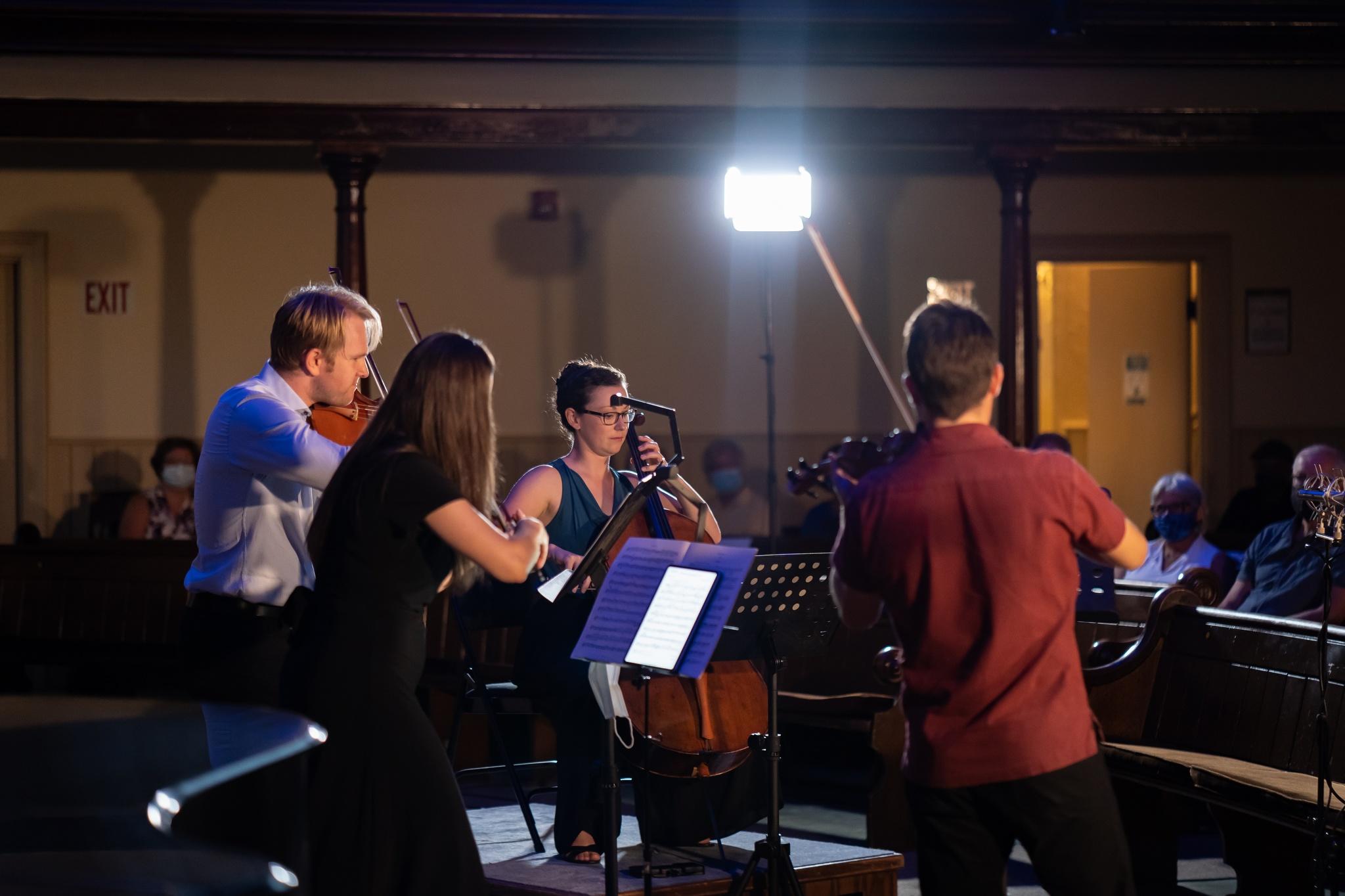 Rosebud String Quartet in performance at the Harmony Centre.