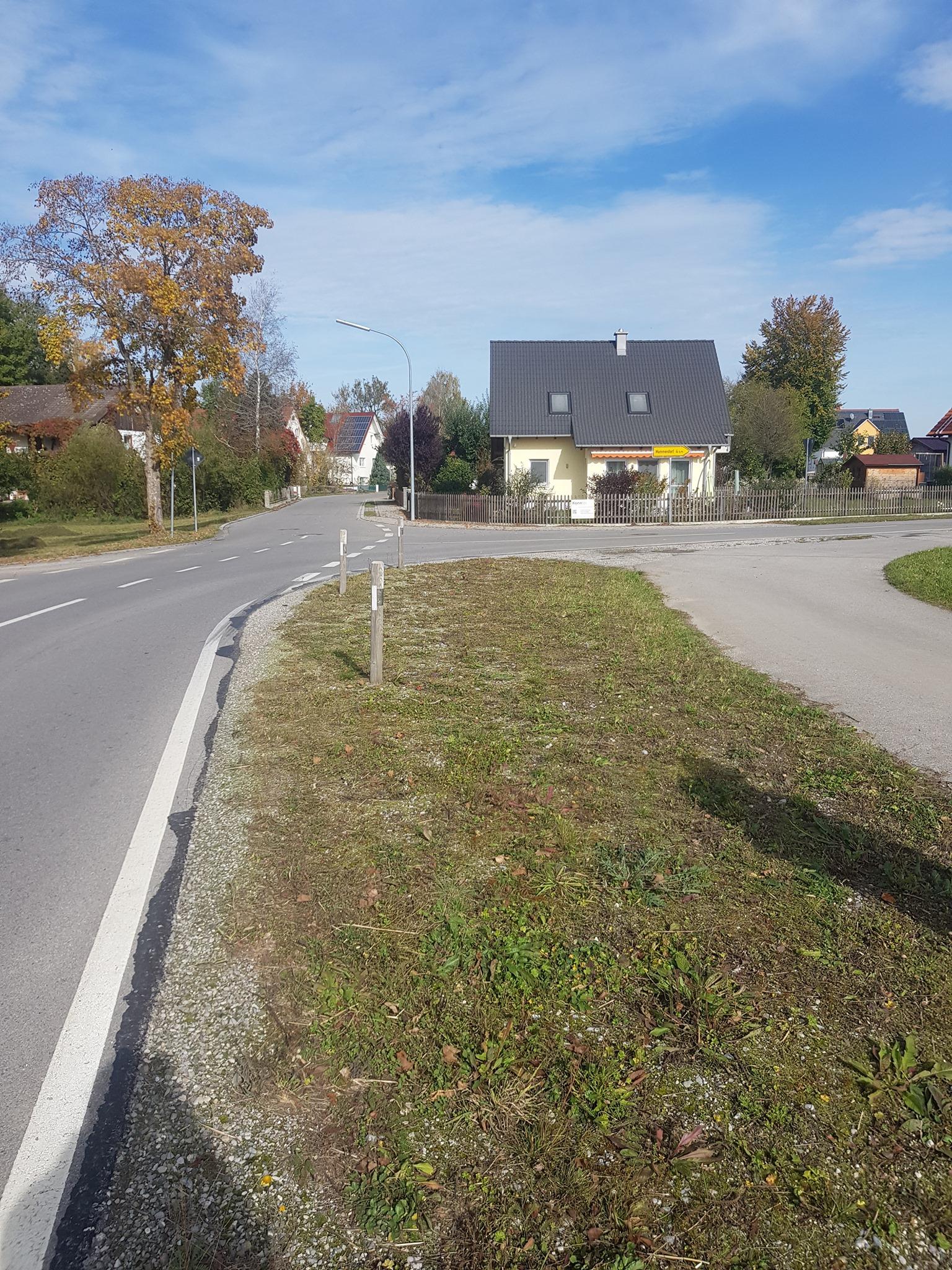 Nassenhausen Süd, wohl verkehrsbedingt abgemäht (C) Antonia Raith