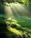 Chercher sa lumière