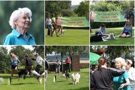 zu den Bildern von der Jubifeier im Juli 2012
