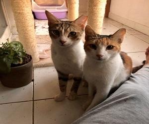 Samira und Leo