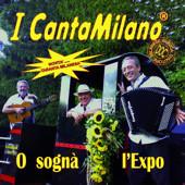 I cahttp://www.amazon.com/O-Sogn%C3%A0-lExpo/dp/B0043WCZMC/ref=sr_1_10?ie=UTF8&s=dmusic&qid=1323437430&sr=1-10ntamilano mettono in copertina il trenino di Marnate