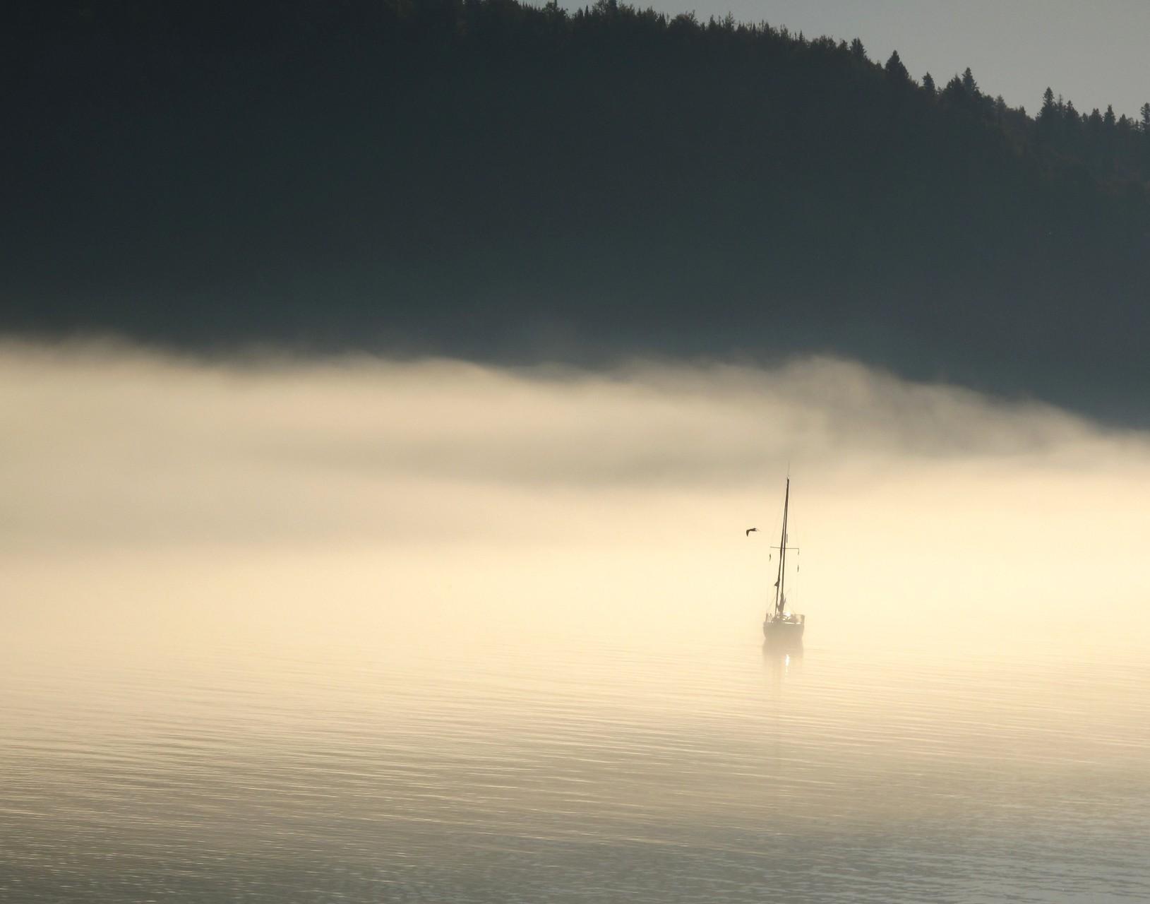 """"""" En attendant la mer""""Julie Turconi"""