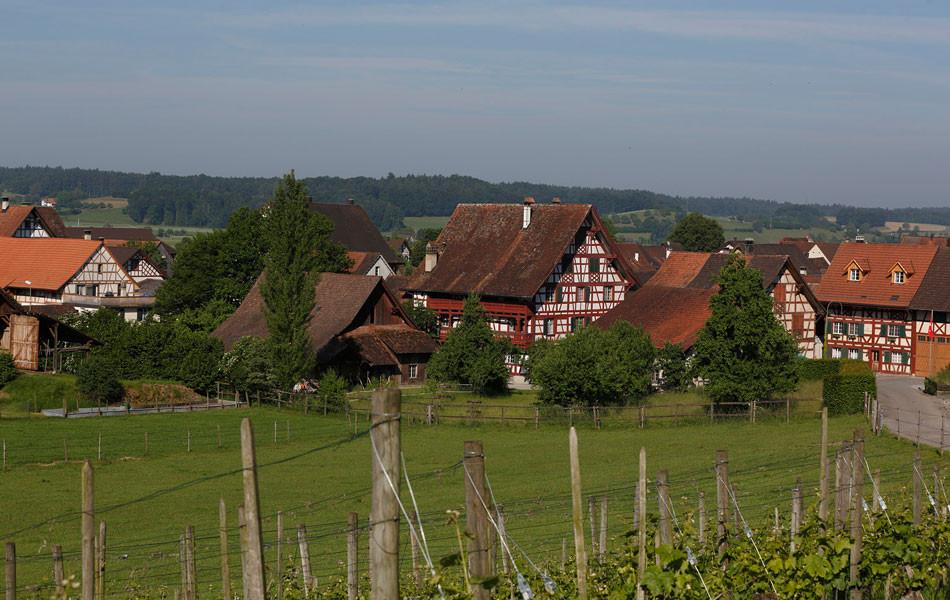 Gasthof Hirschen, Sicht vom Rebberg
