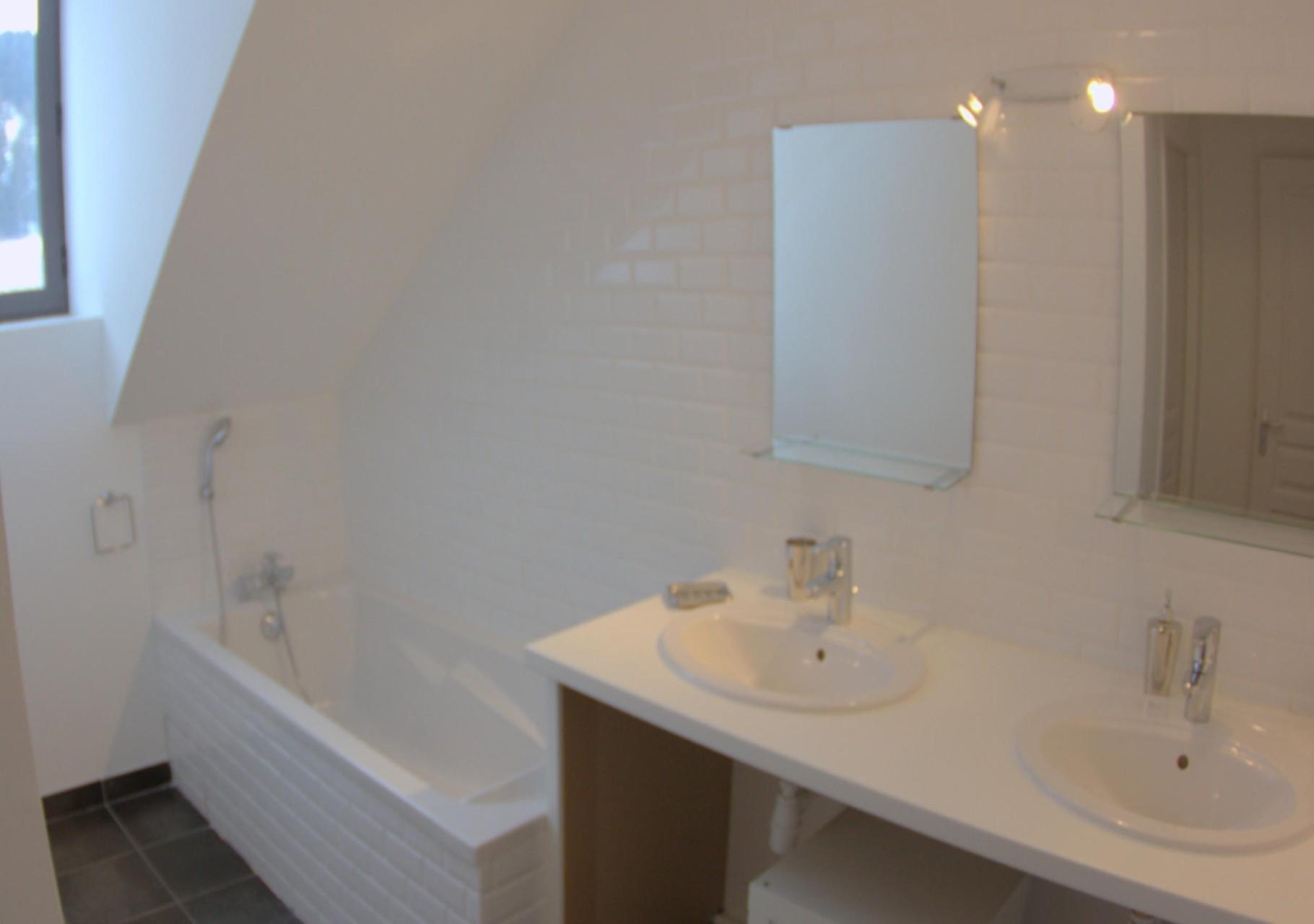 Gîte de Belledonne 1 : salle de bain et WC