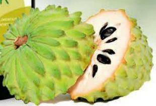 Aloe Drinks von Vegas Vital hier u. a. auch mit der Tropenfrucht Graviola oder Stachelannone genannt
