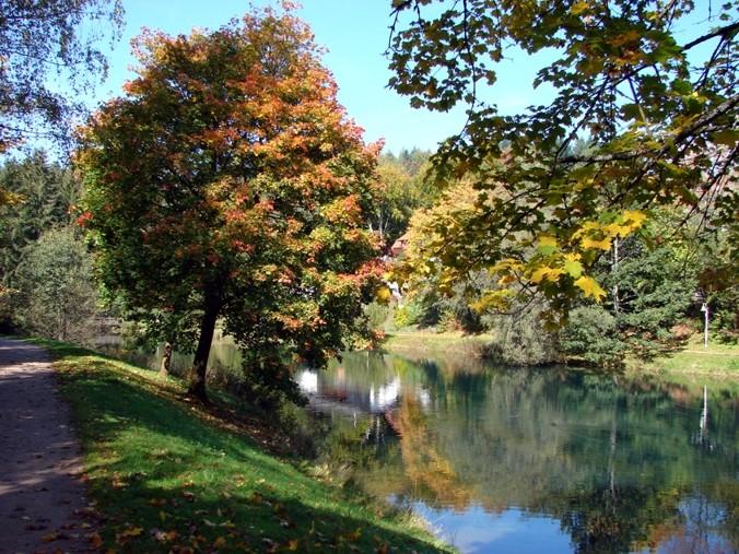 Waldsee in Waldachtal Lützenhardt 2 min vom Hotel entfernt