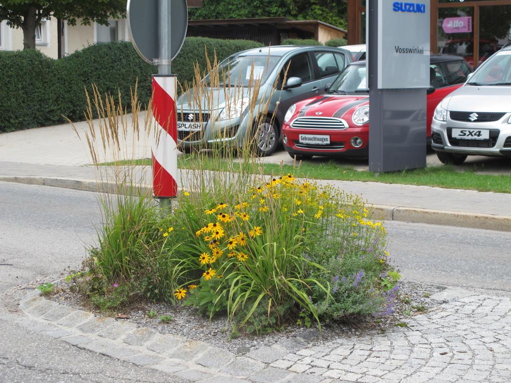 ... in der Miesbacher Straße ...