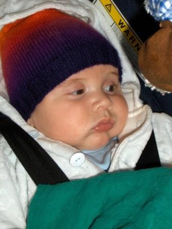 Kimi, der jüngste Nachwuchs beim Mentaltraining!